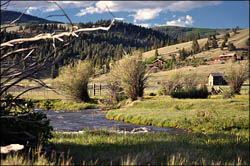Miners Creek Ranch Fly Fishing